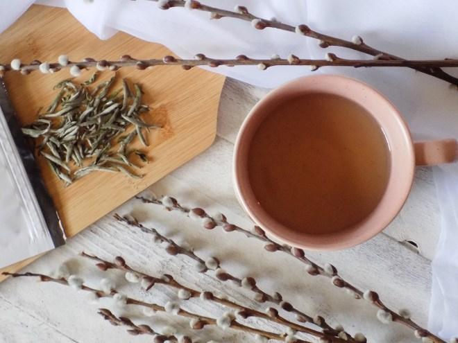 Adagio Masters Bai Hao Yin Zhen Review 2