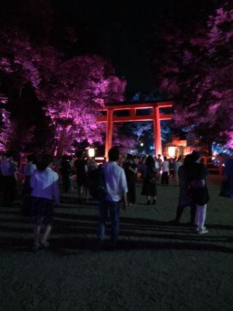 The late summer illumination & Special sweets for god in Kyoto Shimogamo shrine