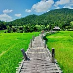 【パーイ】美しい田園風景を堪能できるバンブーブリッジ/Pai Bamboo Bridge