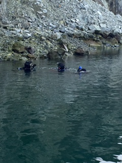 Three divers in the water