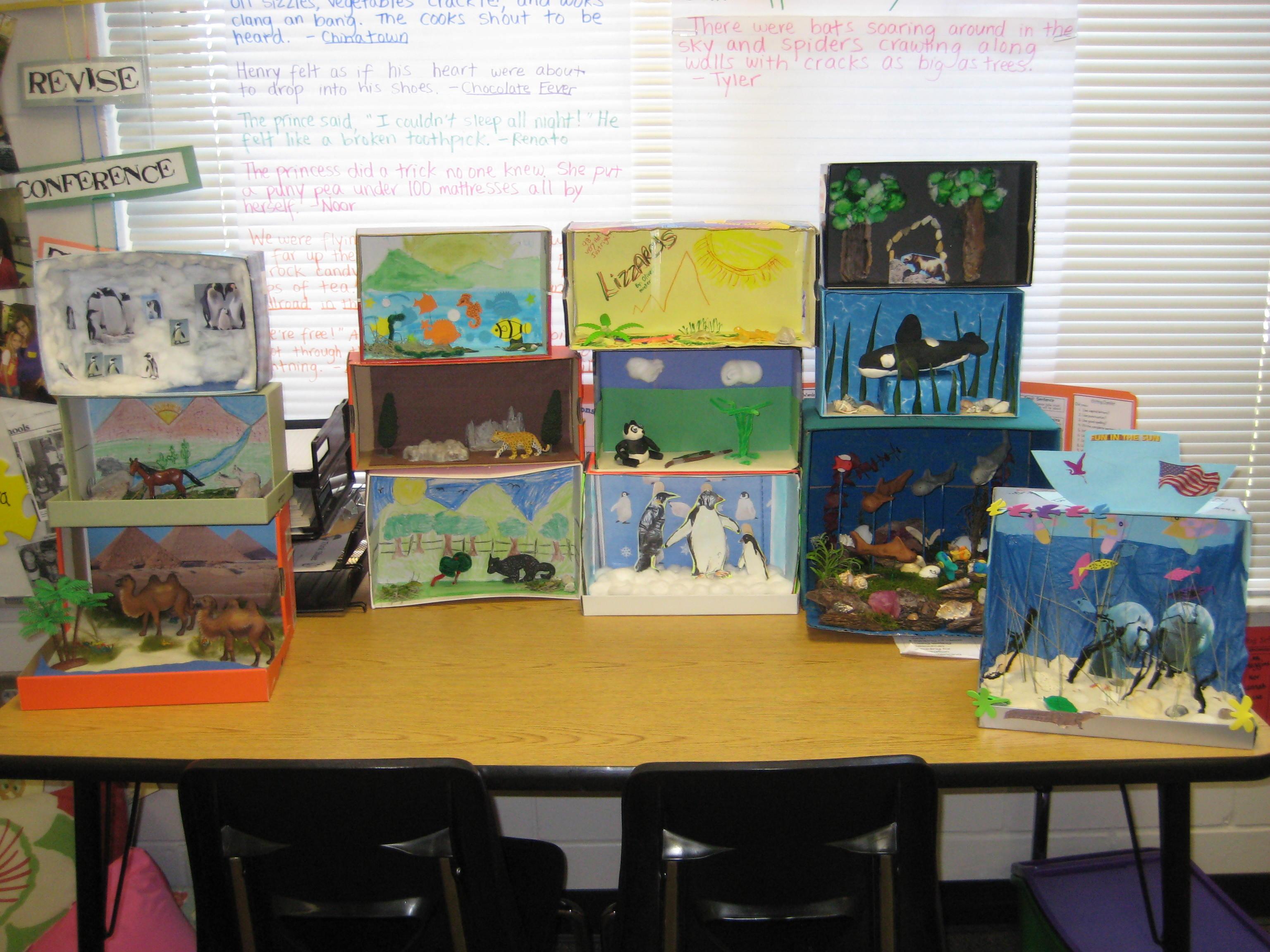 Animal Habitat Diorama Project