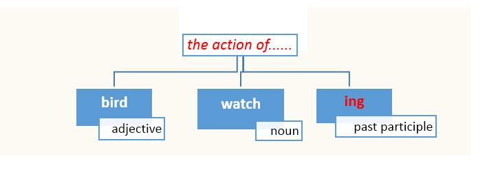 noun + verb + ing to describe an action