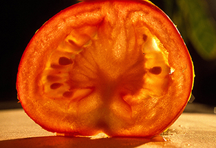 Tomate-Scheibe - Copy