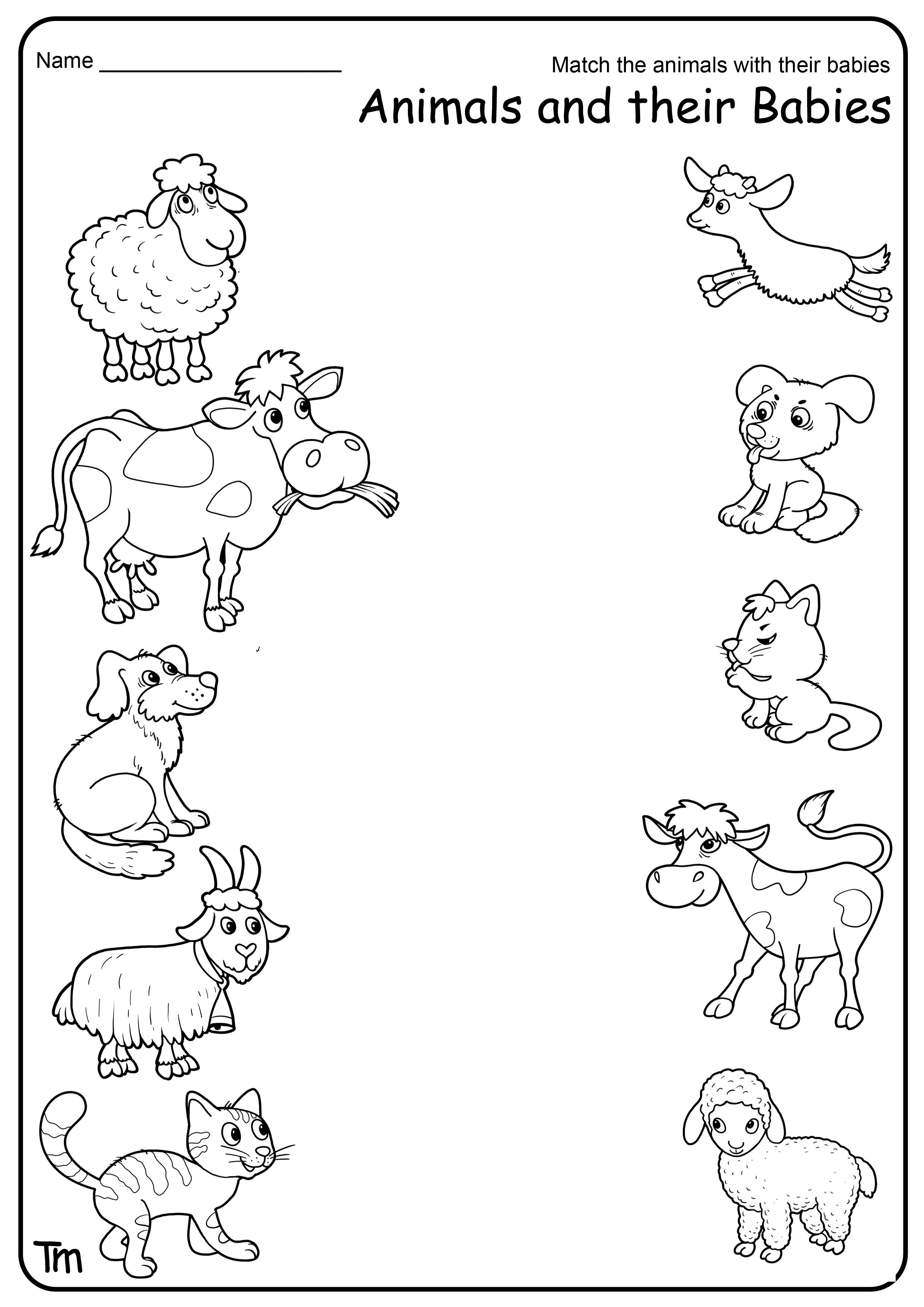 Animal Sounds Worksheet