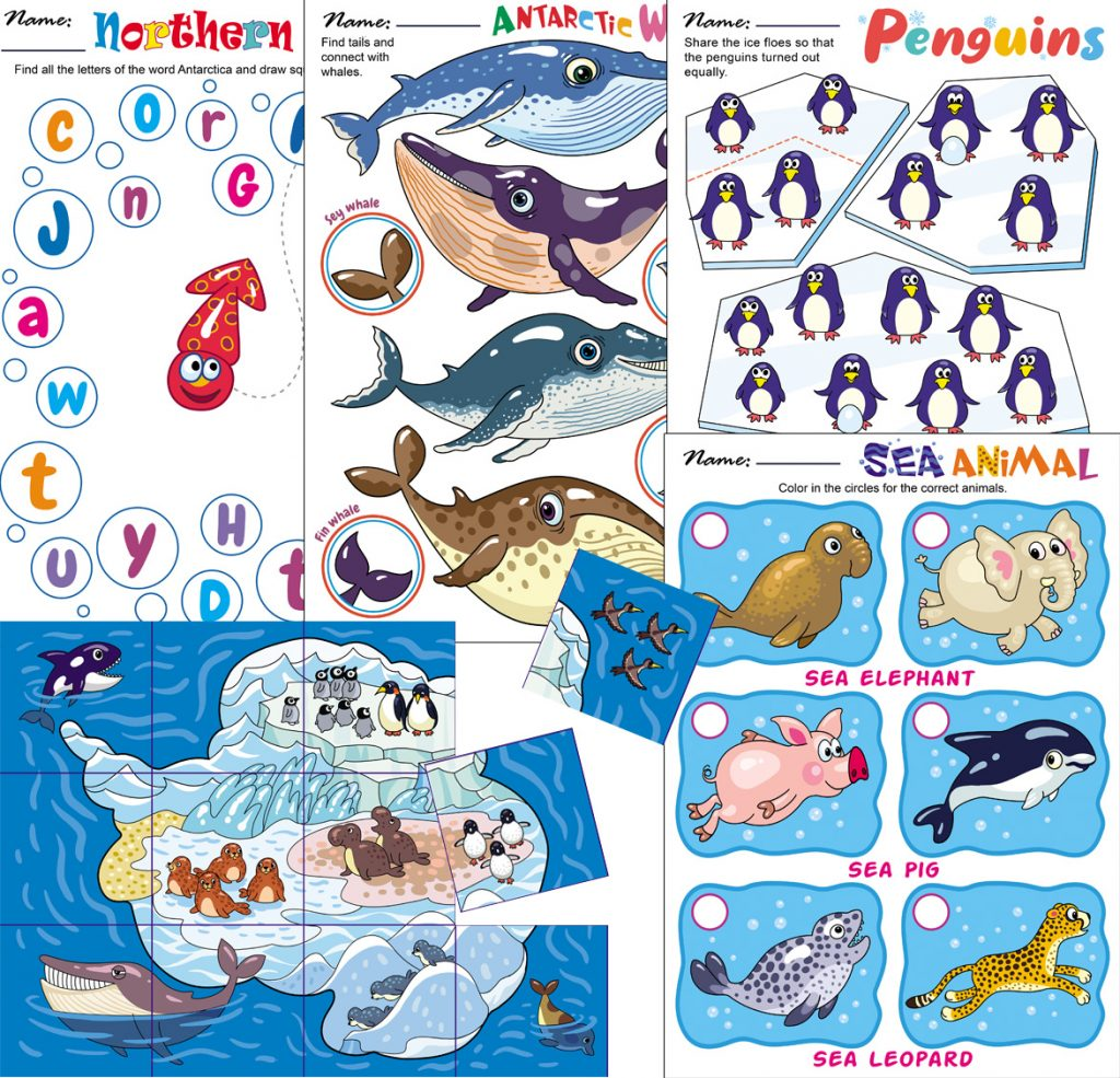 Antarctic Animals Worksheets