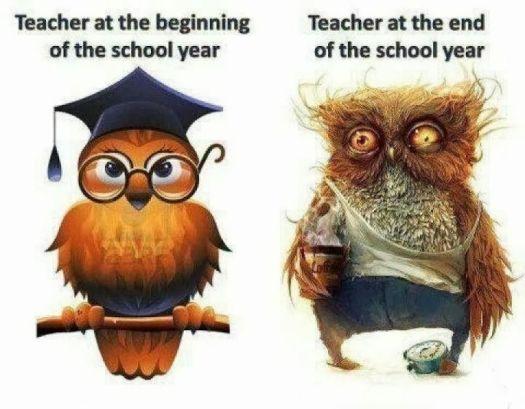 last weeks of school
