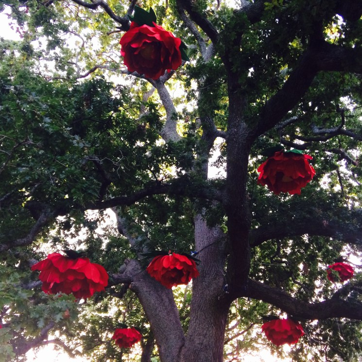 Rose lanterns! Each tree at the festival was decorated with a different theme. They were all so creative!