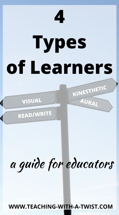 4 Types of Learners Pin