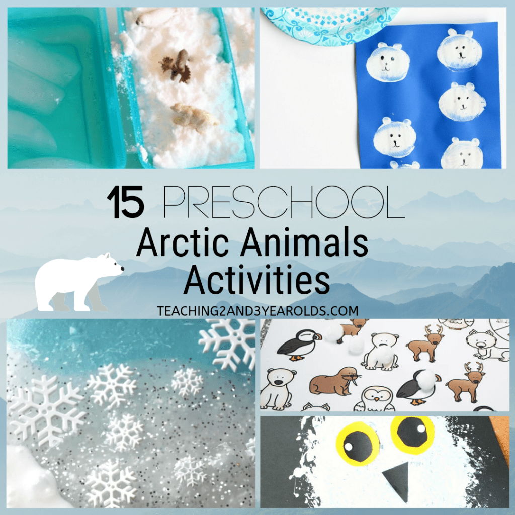 15 Of The Best Preschool Arctic Animals Activities