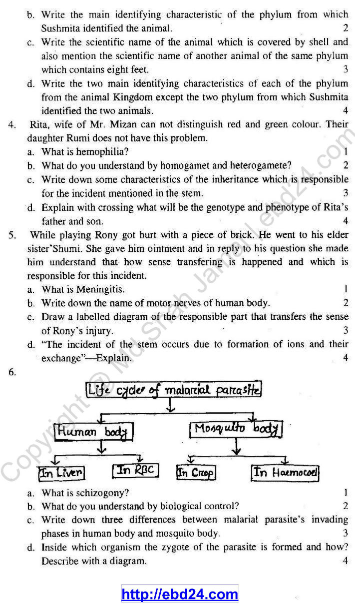 English Version Biology suggestion HSC 2014 (2)