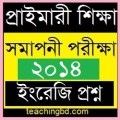 PSC dpe Question of English Subject-2013