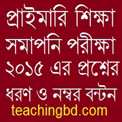 PEC Exam Question Pattern and Mark Distribution 2015 1