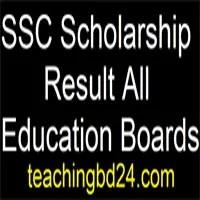 SSC Scholarship Result 2018 All Education Boards 7