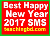Best Happy New Year 2017 SMS