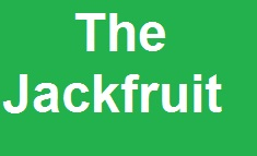 Write A Paragraph: The Jackfruit