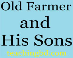 Story: Old Farmer and His Sons 9