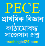 PECE Science Structured questions and answer suggestion 2018