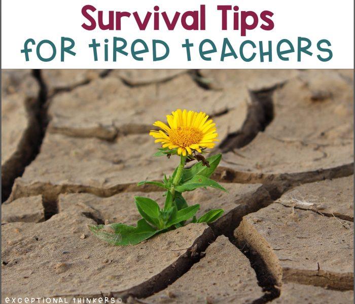 Survival Tips for Tired Teachers