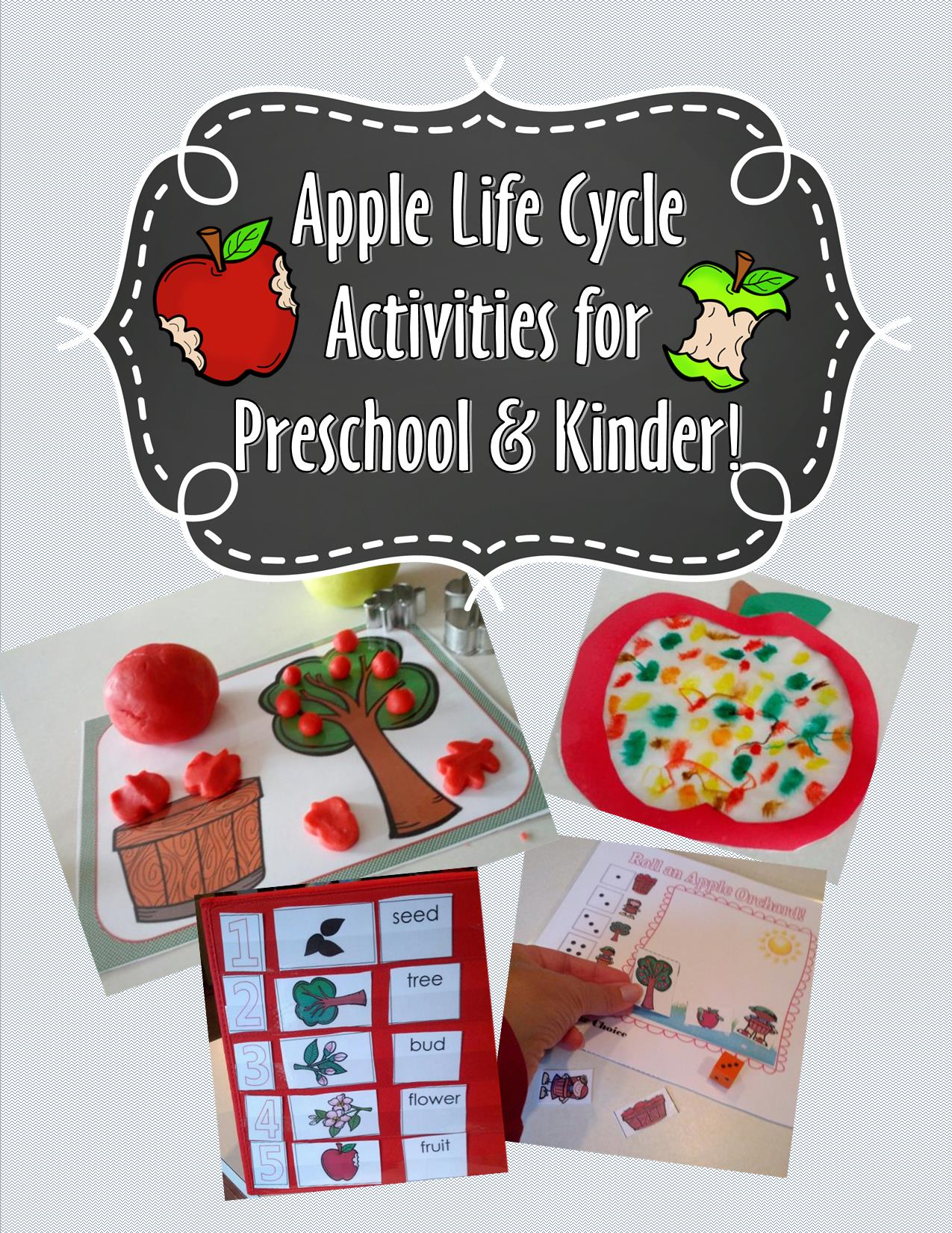 New Apple Life Cycle Packet And Free Printable