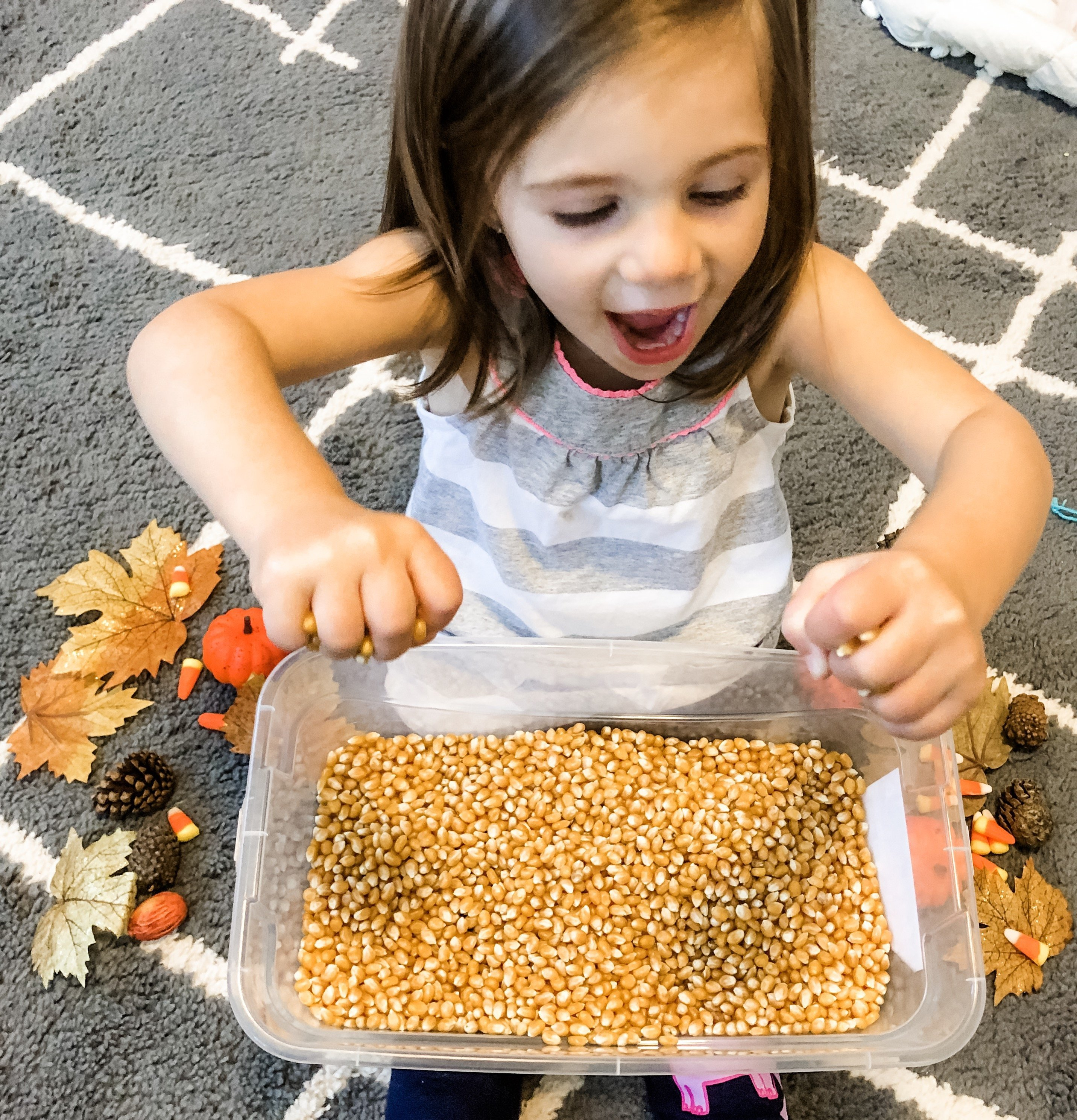 Sensory bins are a great educational & play experience for toddlers. Make one for your child with a fall theme using leaves, pumpkins, corn, and pinecones.