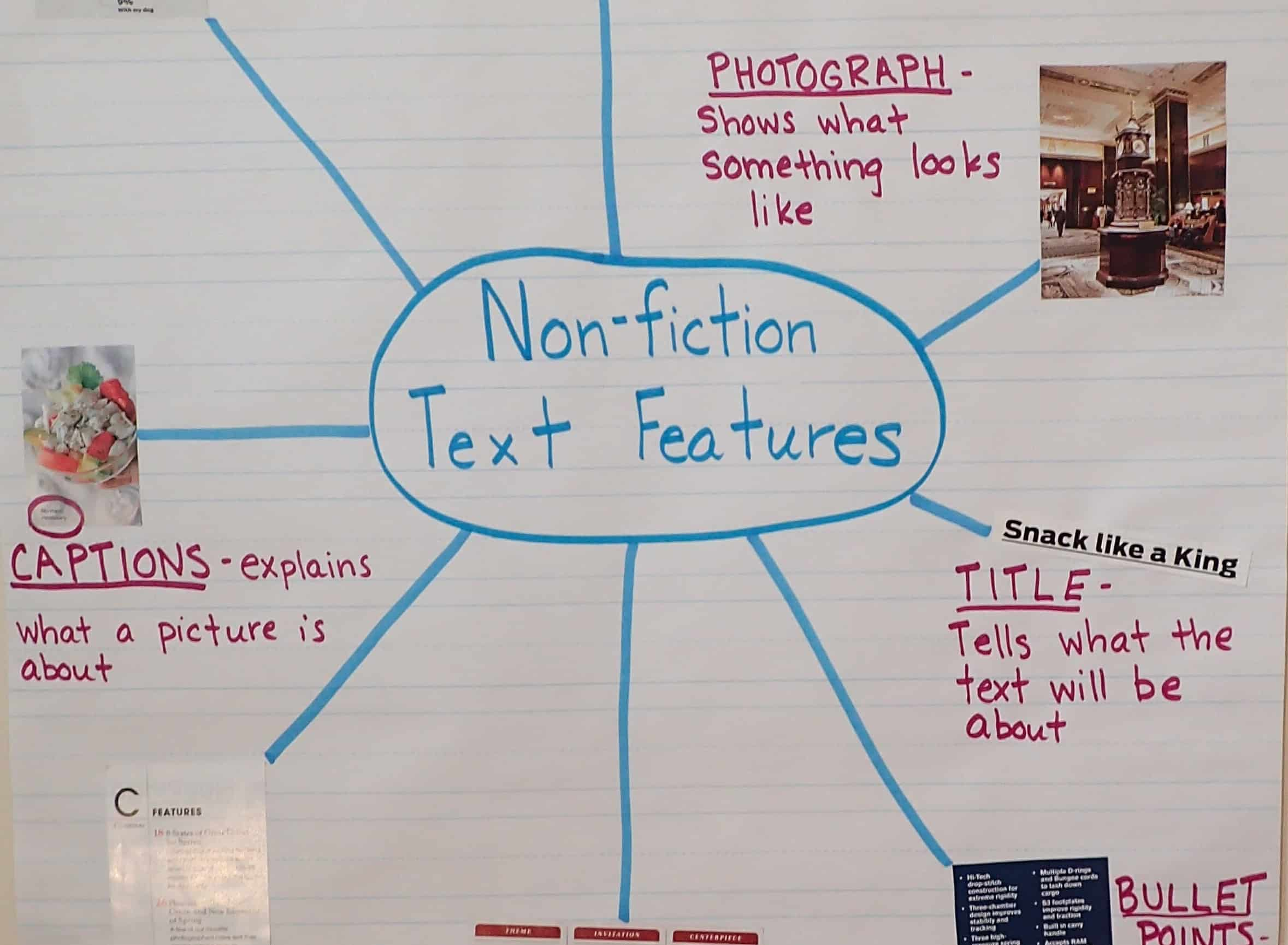 Text Feature Anchor Chart Examples