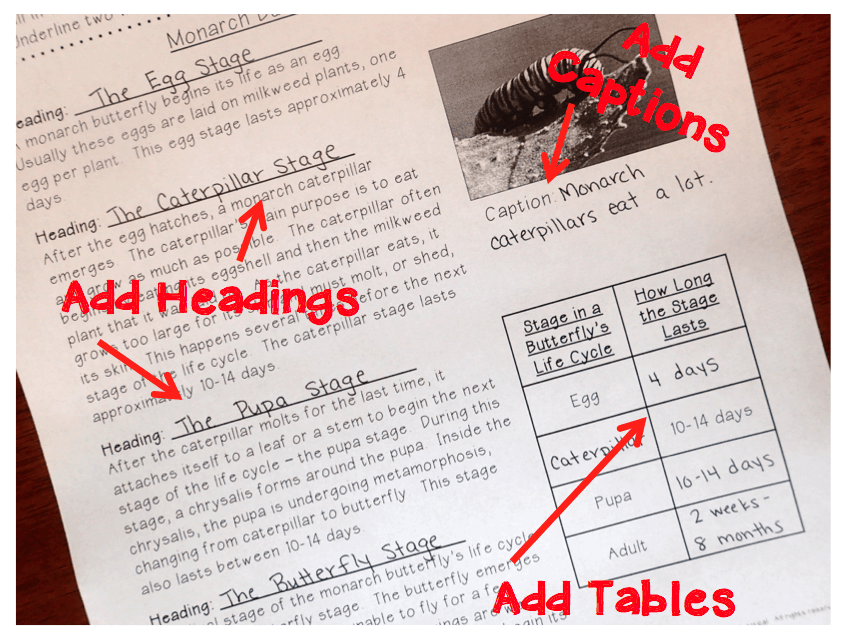 Too often we limit students by only teaching them to identify text features.  These activities that will help you integrate writing into your text features lessons will also give students a better understanding of text features.