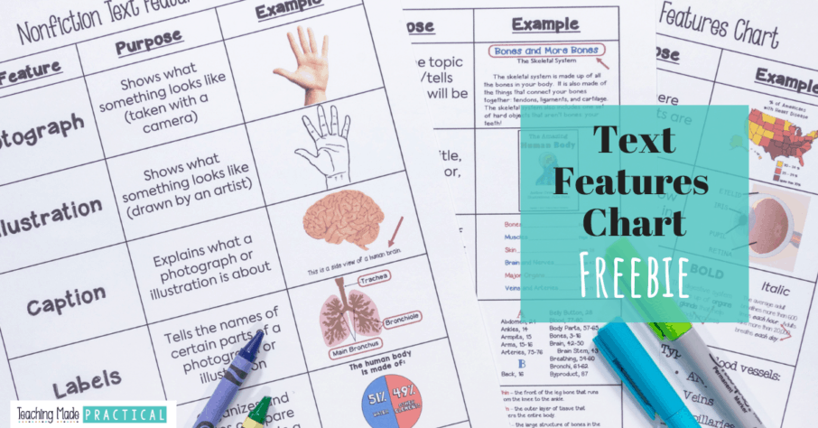 a free printable (pdf) text features chart for 3rd, 4th, and 5th grade students