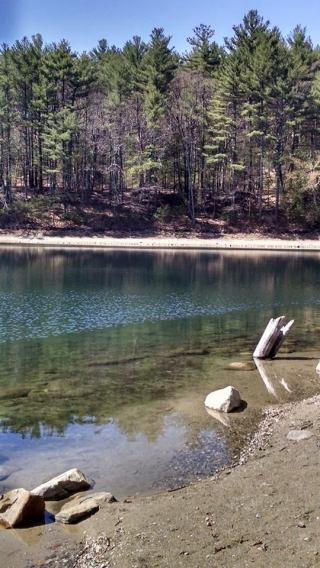 Walden Pond via the author