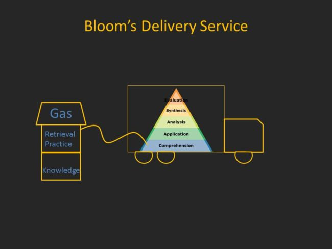 Blooms Delivery Service