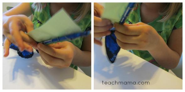 butterfly pens butterfly wrap