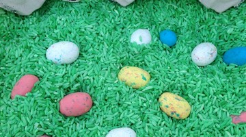Spring Easter Sesnory Bin Egg Hunt and Count
