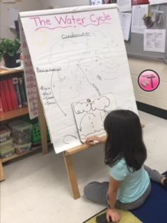 Peak Into My Classroom: My Week in 5