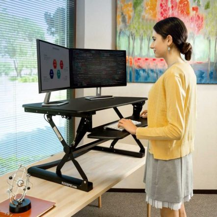 Flexispot standing work desk