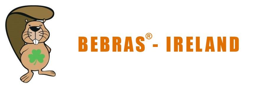 Bebras Ireland banner