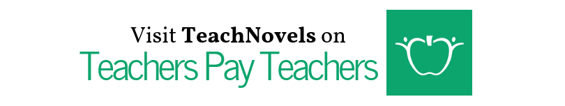 teachers pay teachers banner link
