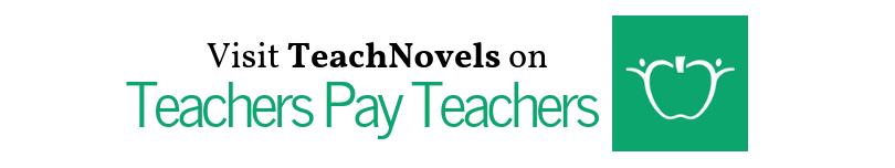 teachers pay teachers banner link