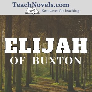 Elijah of Buxton reading checks