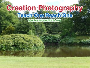 Creation Photography – Teach One Reach One