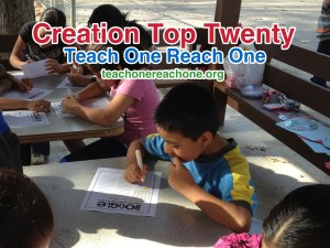 Creation Top Twenty – Teach One Reach One