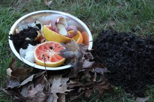 Garden Soil Enrichment – Teach One Reach One