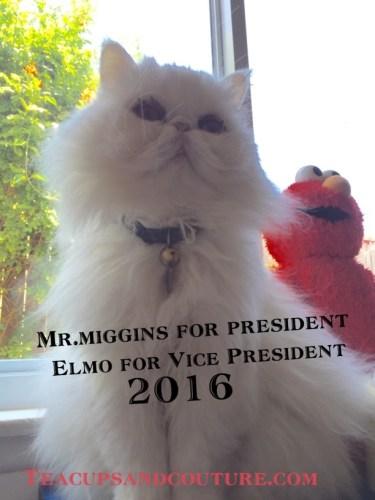 miggspresident