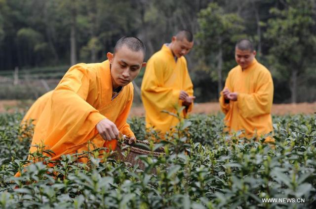 Buddhism and the Tea Leaf: One Fine Marriage