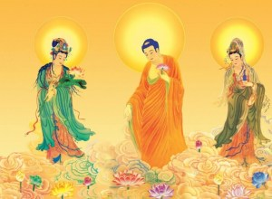 Master Huijing's Dharma Words about the Primary Sutras (General)