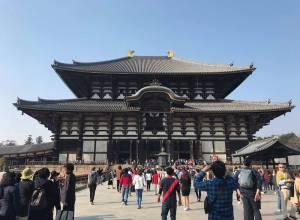 Exploring Todai-ji Temple, Kofuku-ji, and Deer Park in Nara