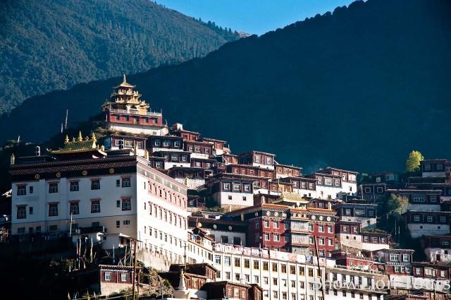 The Primordial, Noble Life with Khenchen Tsewang Gyatso Rinpoche