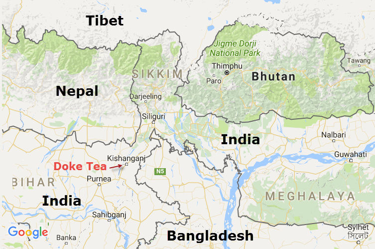 Doke is located near Kishanganj (the chicken neck) a new tea-growing regions surrounded by Araria to the West, Purnia to the South-west, Uttar Dinajpur on the East and Darjeeling and Nepal to the North. It only about 20 km from Bangladesh. Bihar state was part of Nepal until 1840 are remains home to many native tribes.