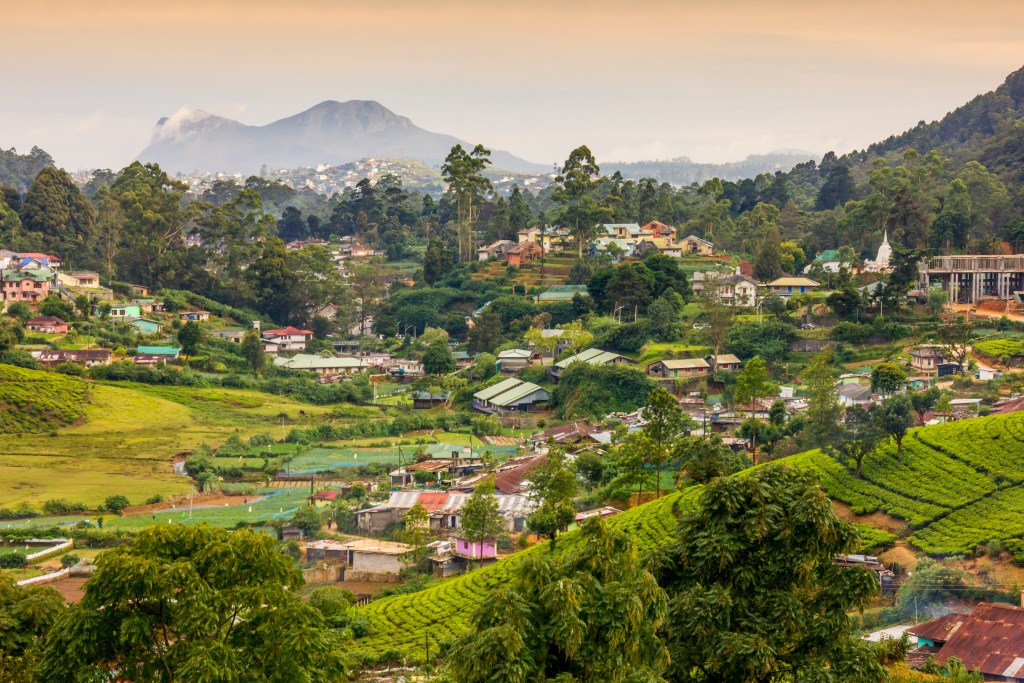 Sri Lanka is both a tea lover's and traveler's paradise.