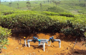Automated irrigation system