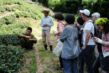 Garden tour, Japan