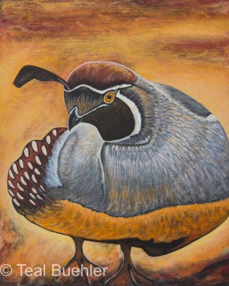 Quail - 16 x 20 Acrylic on Canvas Board
